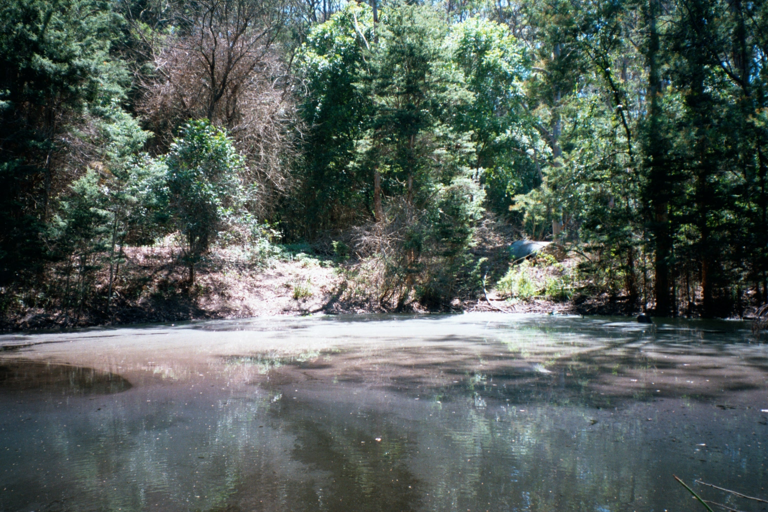 pond at glenning valley